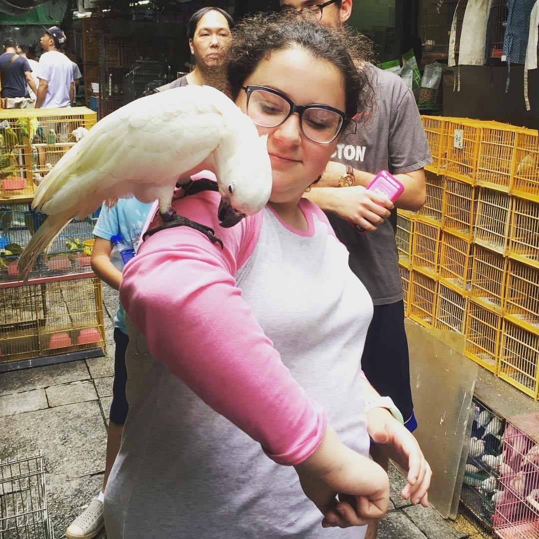 Bird market with kids